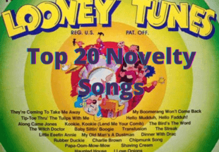 Top 20 Novelty Songs